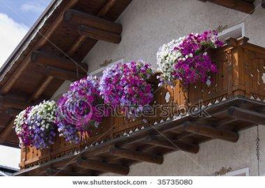 красивый цветущий балкон