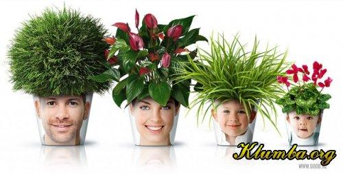 07 06 2012 в новости мира растений