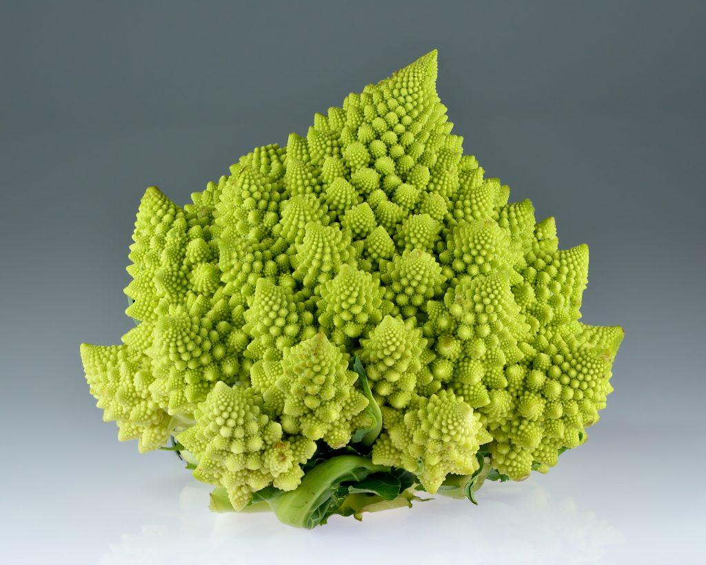 Капуста Романеско: Romanesco broccoli (Brassica oleracea). Фото Ivar Leidus.